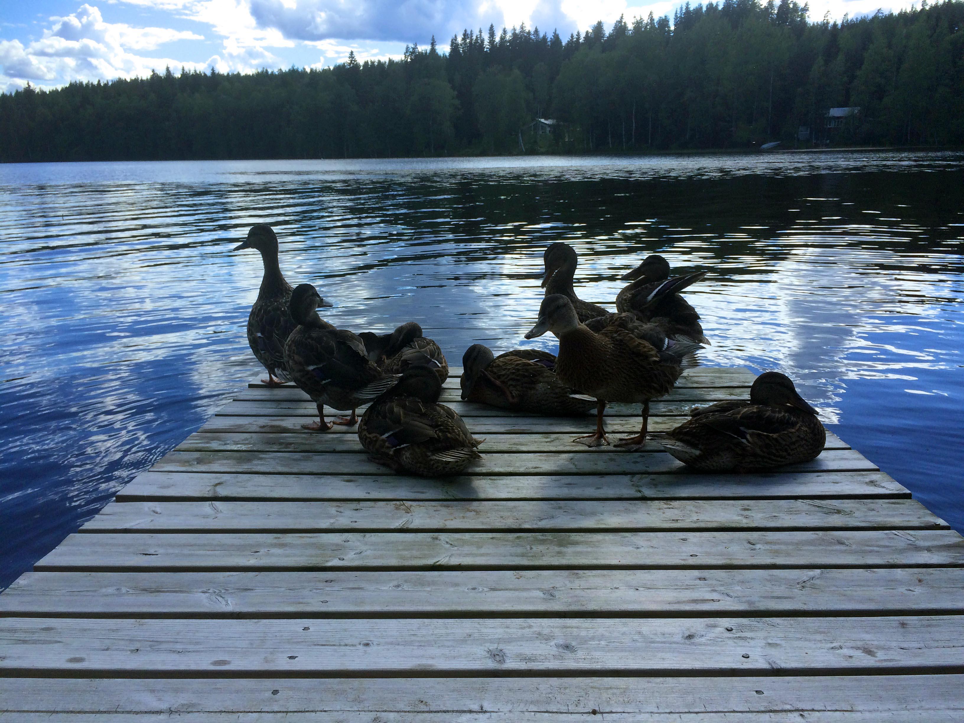 Taking photos on lake